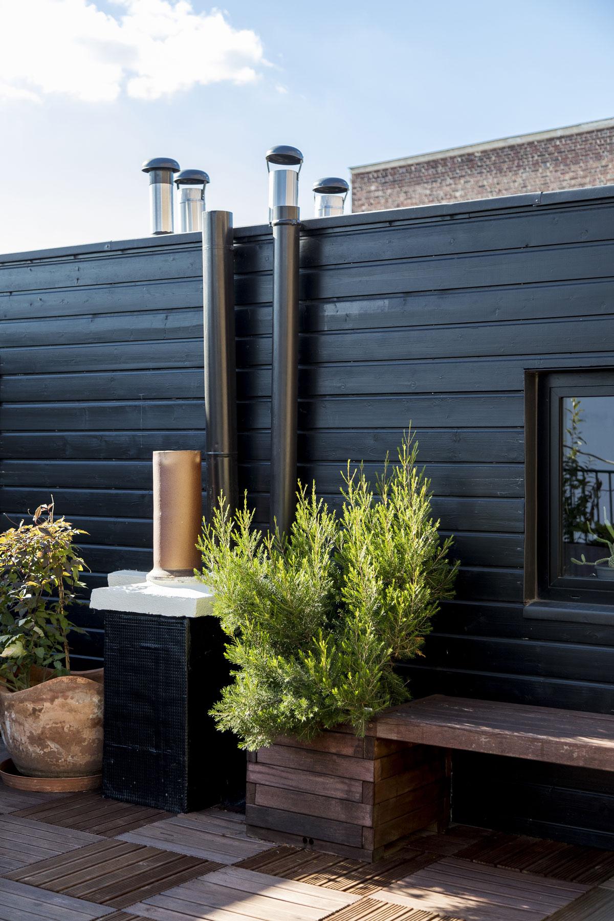 Extension en bois appartement, toit terrasse, rooftop